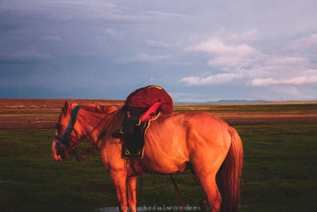 Mongolian kid having fun horseback riding
