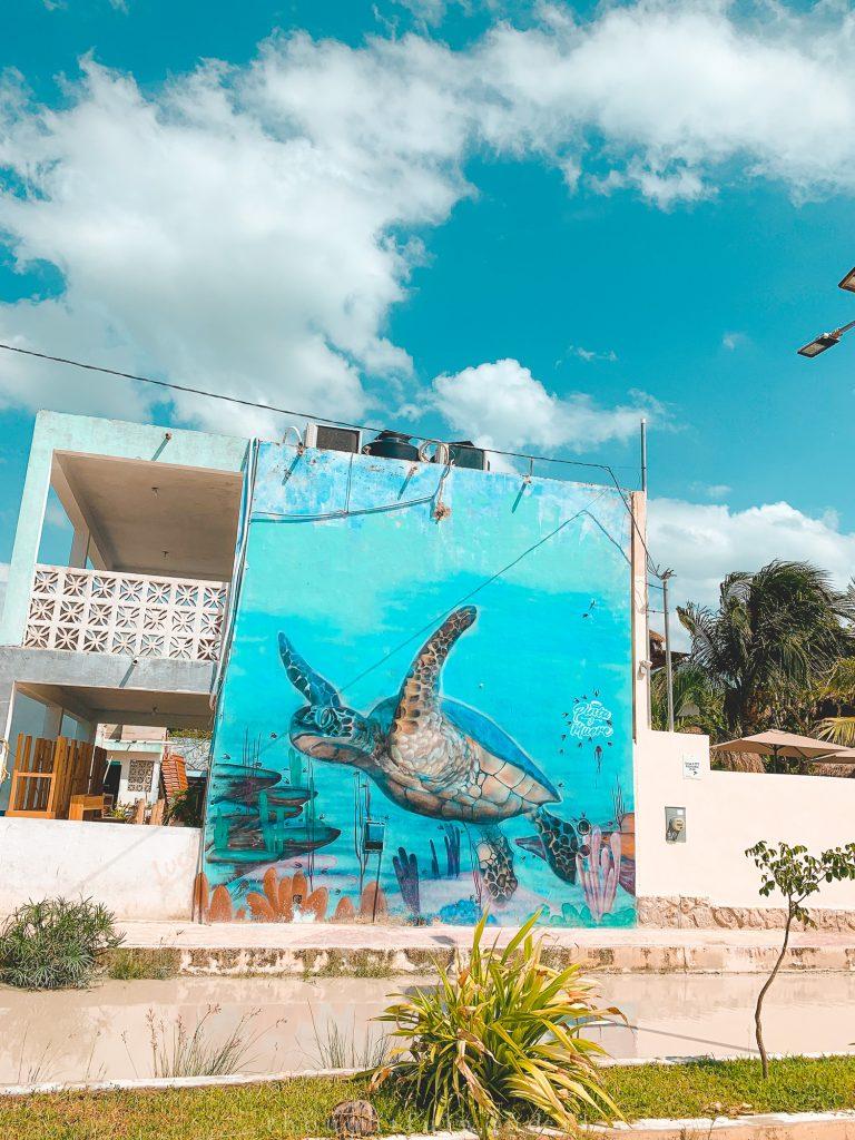 sea turtle street art Isla Holbox