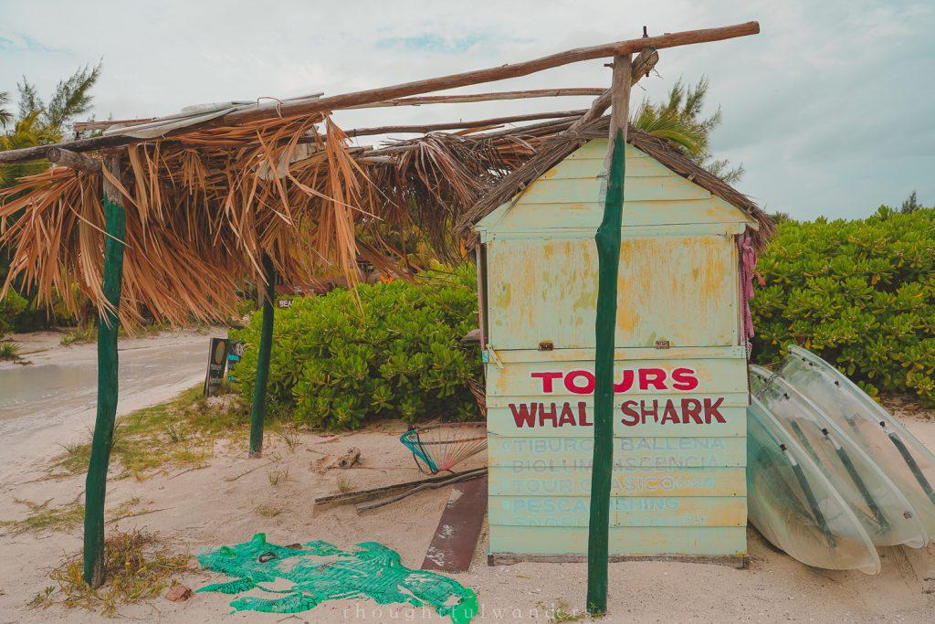 tours hut on the beach Isla Holbox