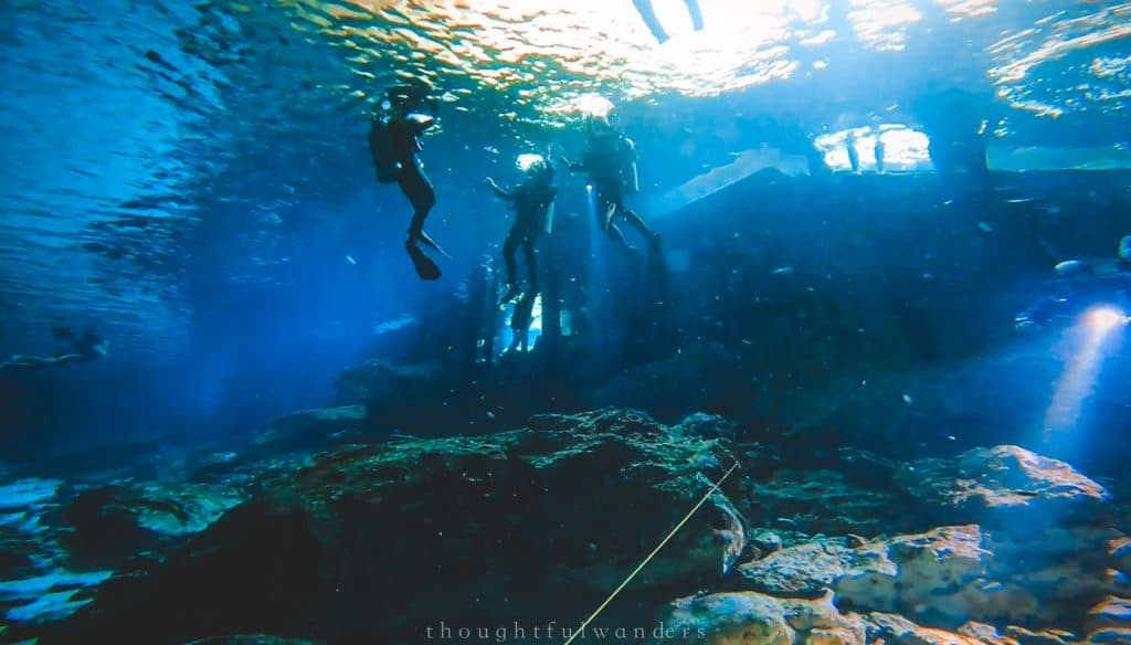 Perspective from the bottom of Dos Ojos looking up at scuba divers at the surface